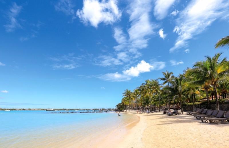 le-mauricia-beach-palms
