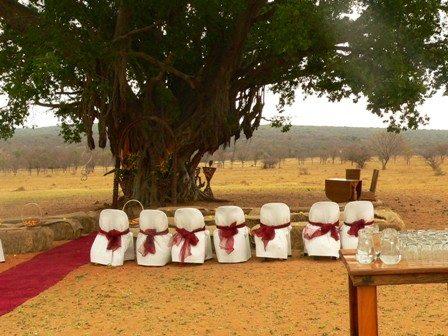 wedding-area