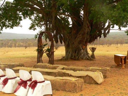 wedding-area2