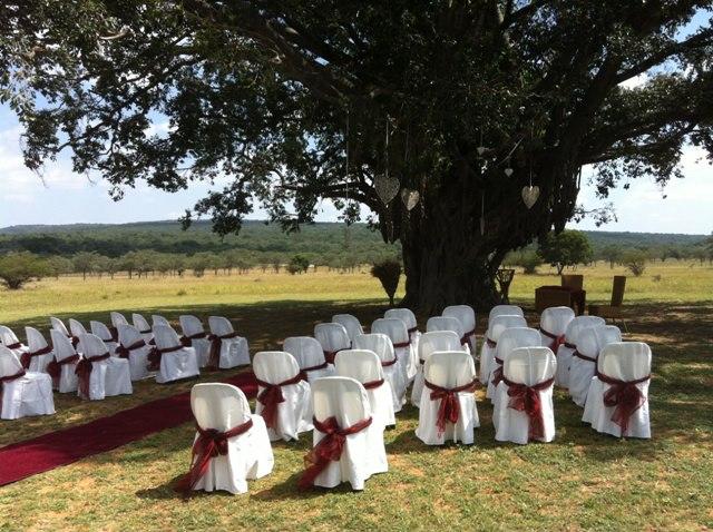 wedding-ceremony-area