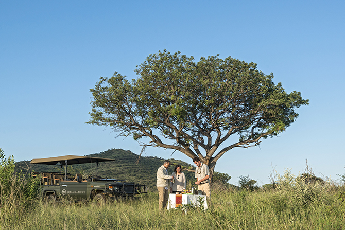 RoyalMadikwe-sundowner-wildlife-waterhole
