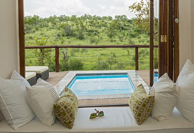 royal-madikwe-luxury-twin-suite-plunge-pool