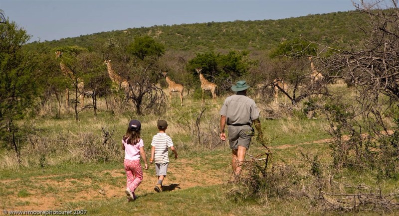 Family-safaris-21
