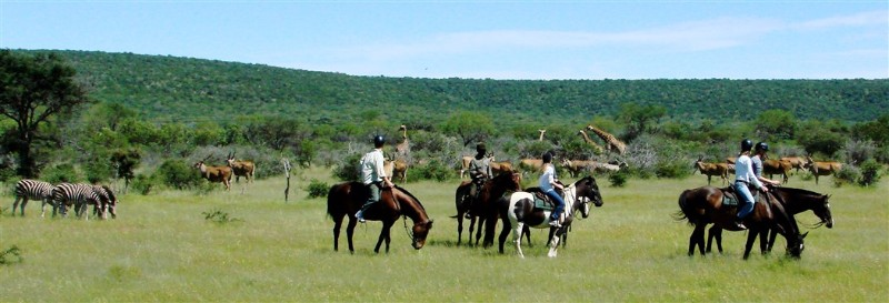 Riding-safaris-at-Ants-54