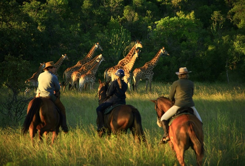 Riding-safaris-at-Ants-57
