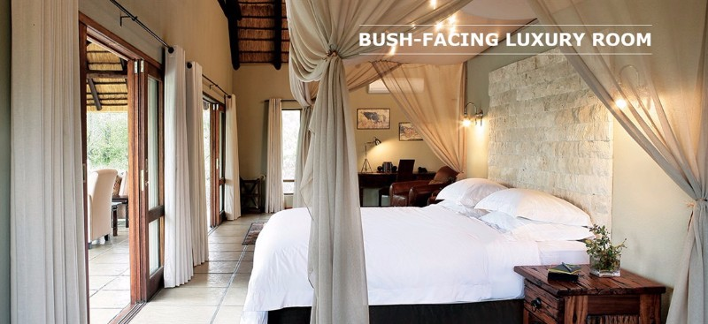 arathusa-accommodation-bush-facing-luxury-room