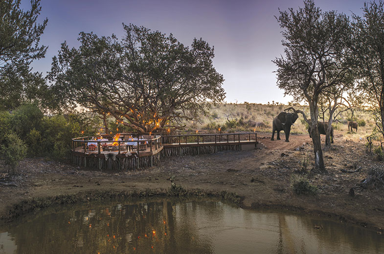 boma-at-tuningi-safari-lodge-madikwe