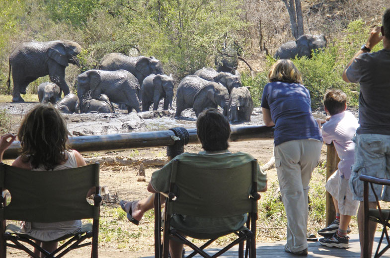 tuningi-viewing-deck-safari-madikwe