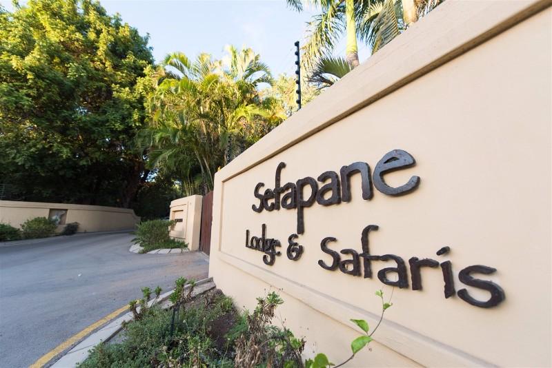 sefapane-1