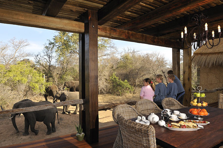 Camp-Jabulani-Accommodation_Zindoga-Villa_Children-on-deck-looking-at-Elephants