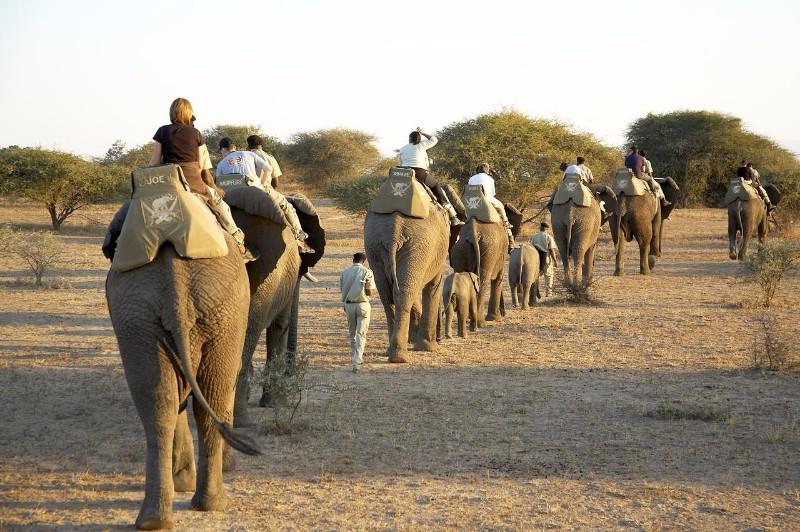 ELEPHANT-BACK-SAFARI-at-Jabulani