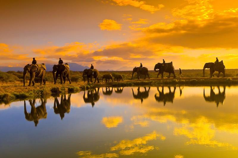 photographer-Blaine-Harrington-captured-camp-jabulani-unforgetable-sunsets-on-elephant-back