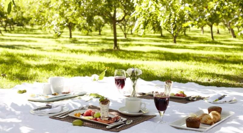 jan-harmsgat-picnic