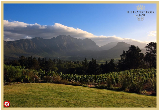 franschhoek-cellar-views