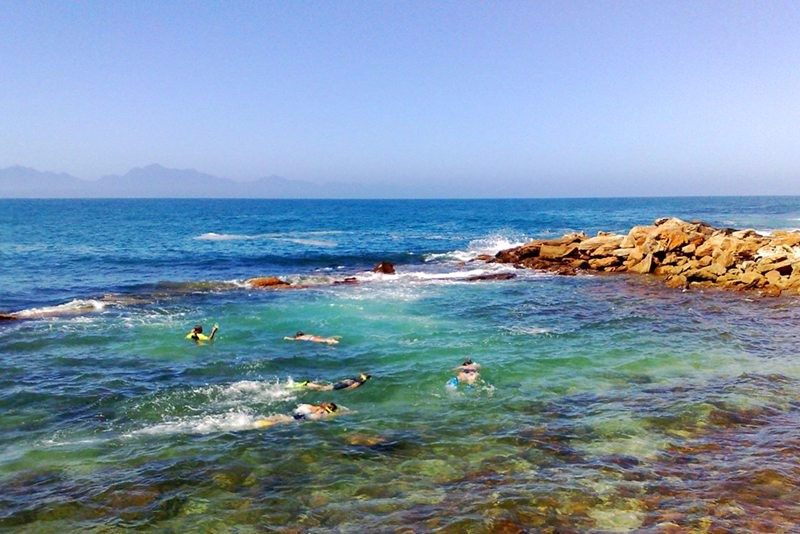 snorkelling_at_mossel_bay_point_3