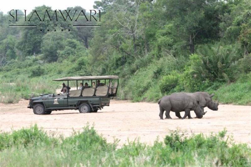 jock-game-drive-rhino