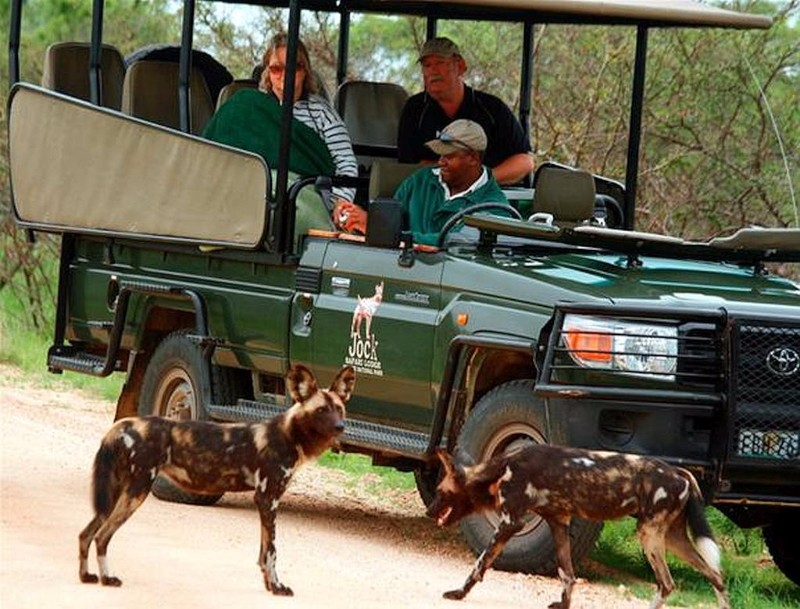 jock-safari-lodge-guest-experience-3