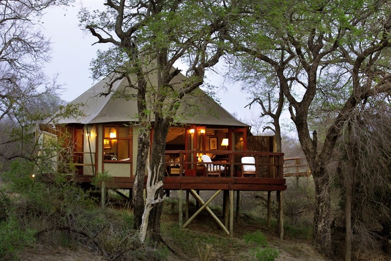 HAMILTONS-TENTED-CAMP