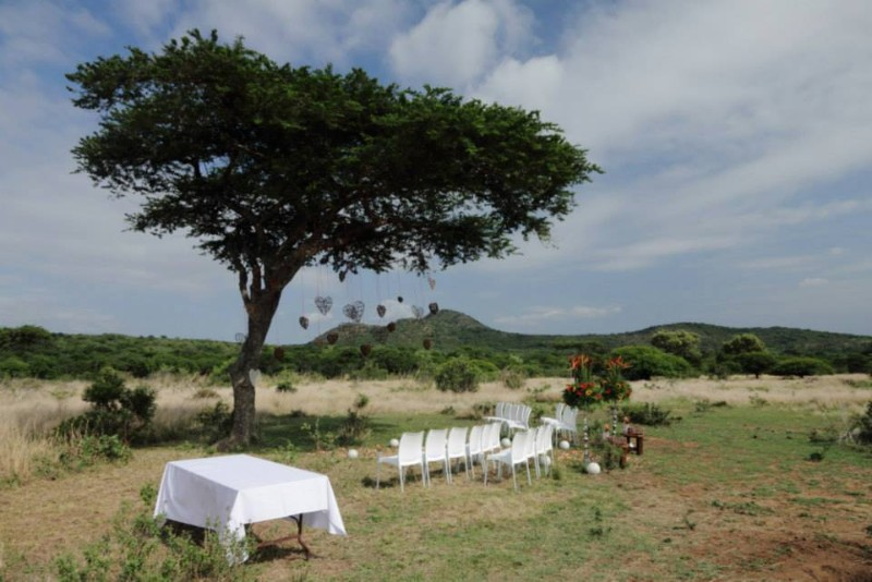 yamati-weddings-bush