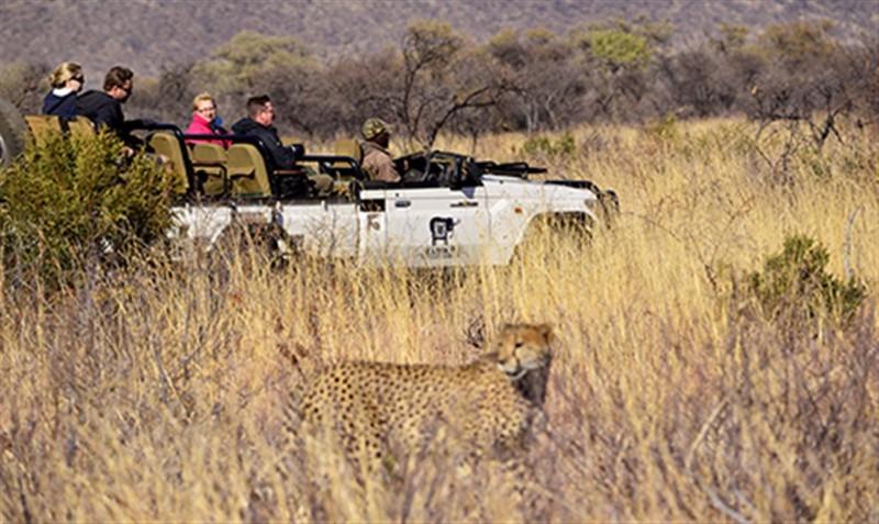 MRL-Cheetah