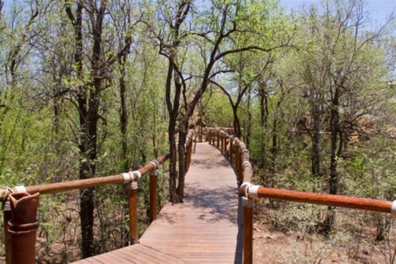 Madikwe-River-Lodge-7