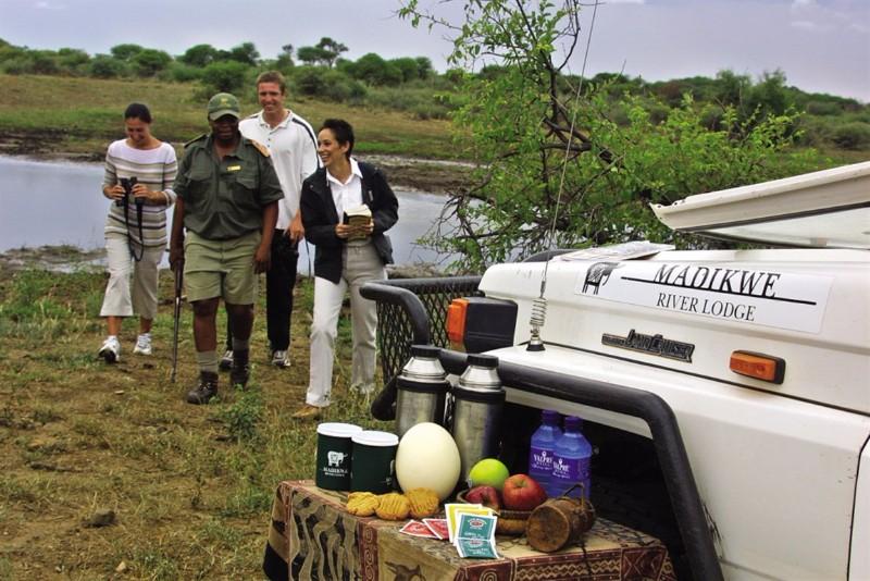 madikwe-river-lodge-drive-1024x683