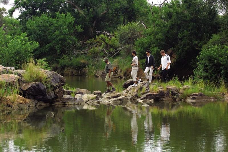 madikwe-river-madikwe-walk-1024x683
