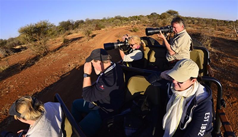 madikwe-river-photographic-safari-on-the-vehicle_MBU7219_IJFR1