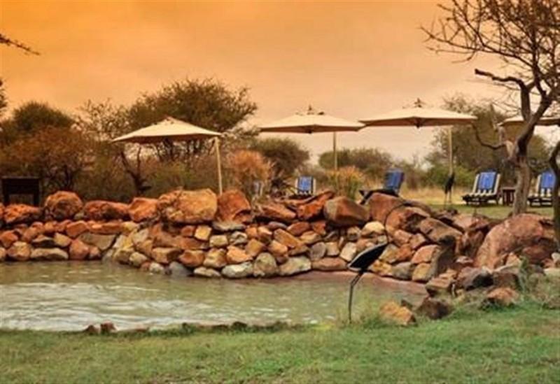 pool-8-madikwe-river-lodge