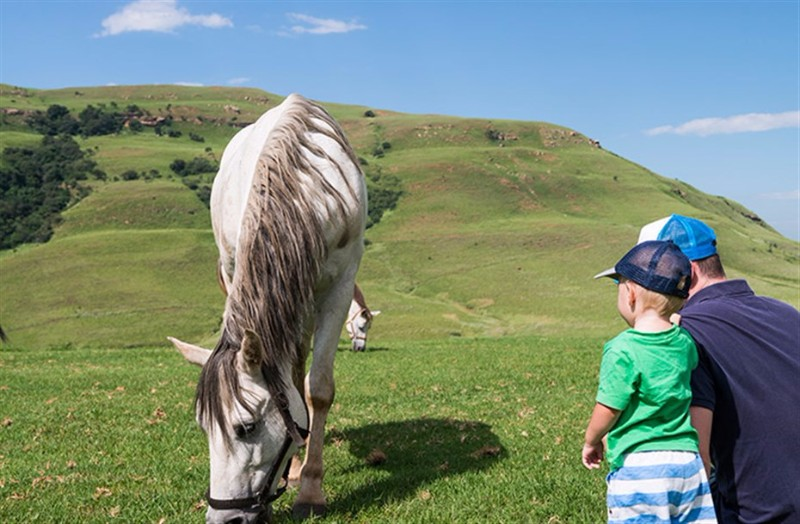 AlpineHeath-outdoor-horse-kids