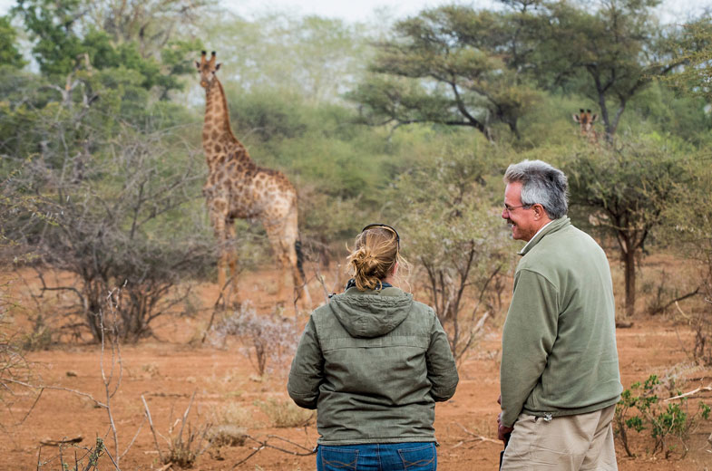 giraffe-while-on-safari-in-the-makuleke