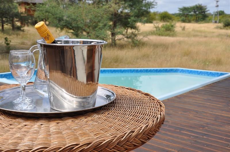 nThambo-Tree-Camp-Pool-Wine