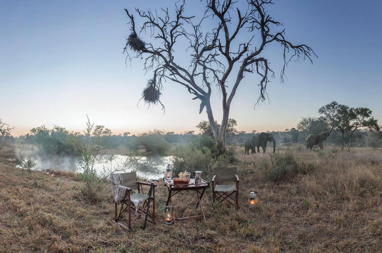 picnics-at-the-waterhole