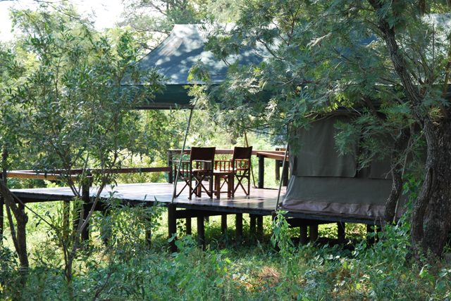 Simbavati-tents