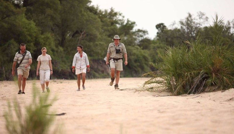 activities-luxury-walking-safari.jpg.950x0