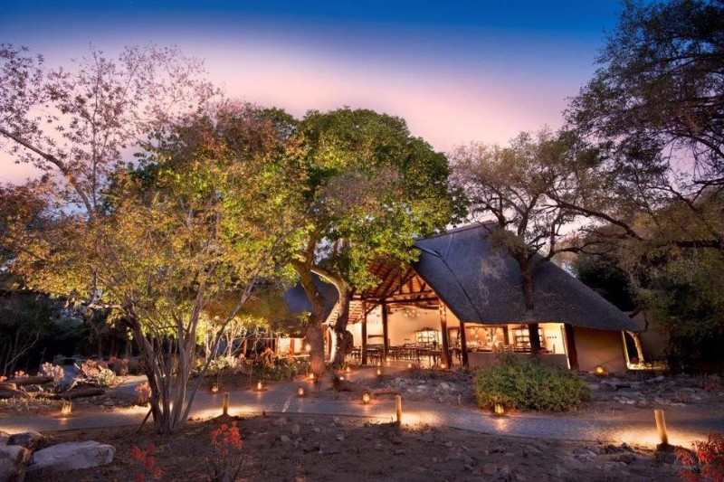 ngala-safari-lodge-2.jpg.950x0