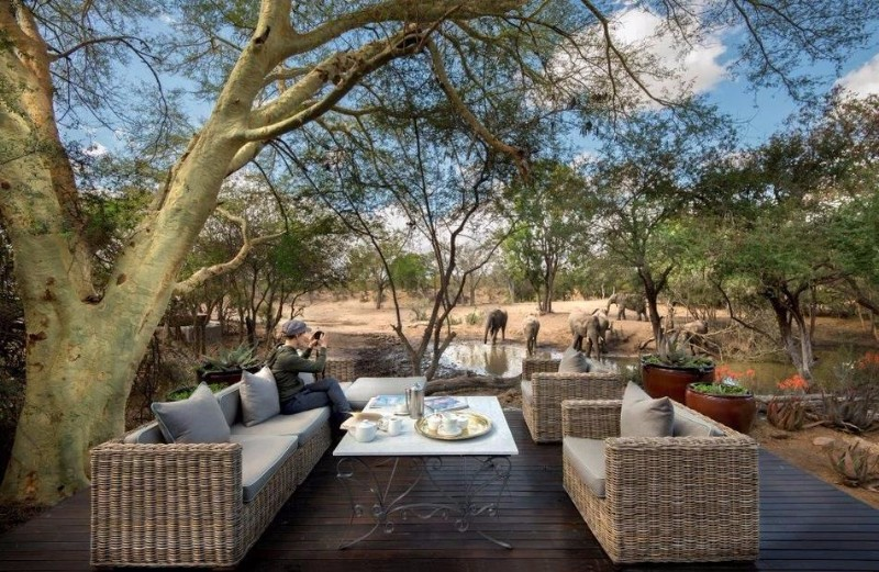 ngala-safari-lodge-guest-area-6.jpg.950x0