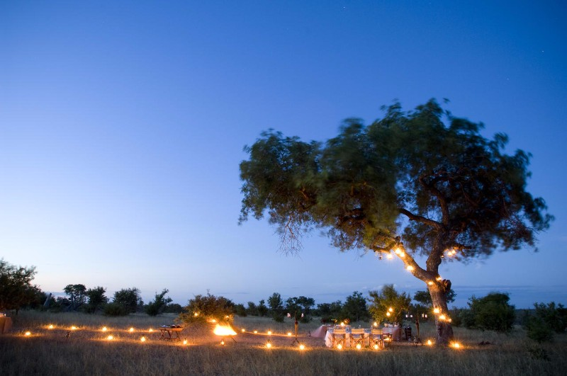 ngala_safari_lodge_bush_dinner2