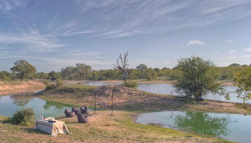 safari23.jpg.950x0