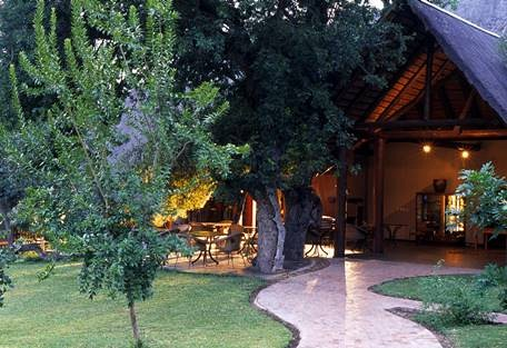 sunsafaris-8-ngala-safari-lodge