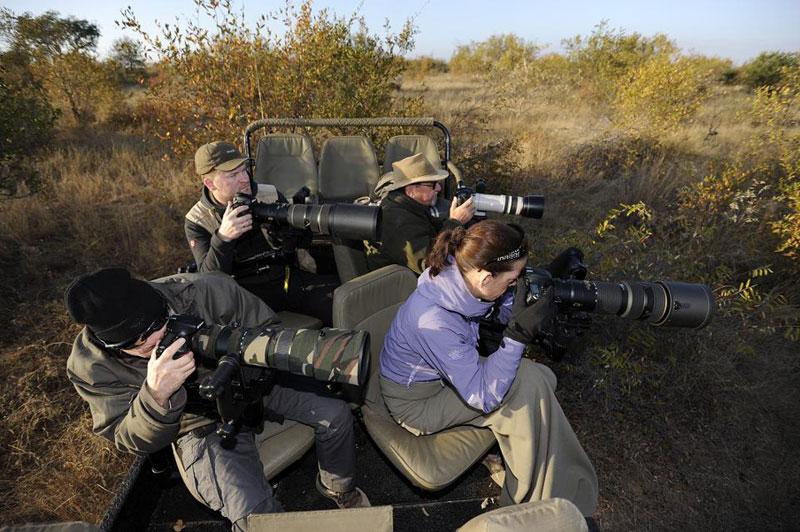 Simbavati hilltop Photographic safari in Timbavati Greater Kruger Park