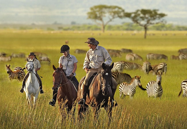 Horse-riding-safari-Blue-Mountain-Lodge