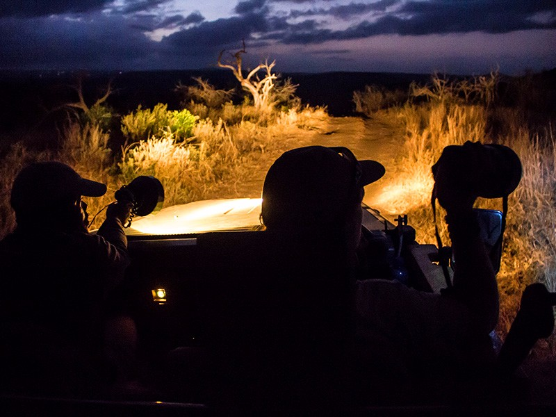 Thula-Thula-Night-Drive-M2