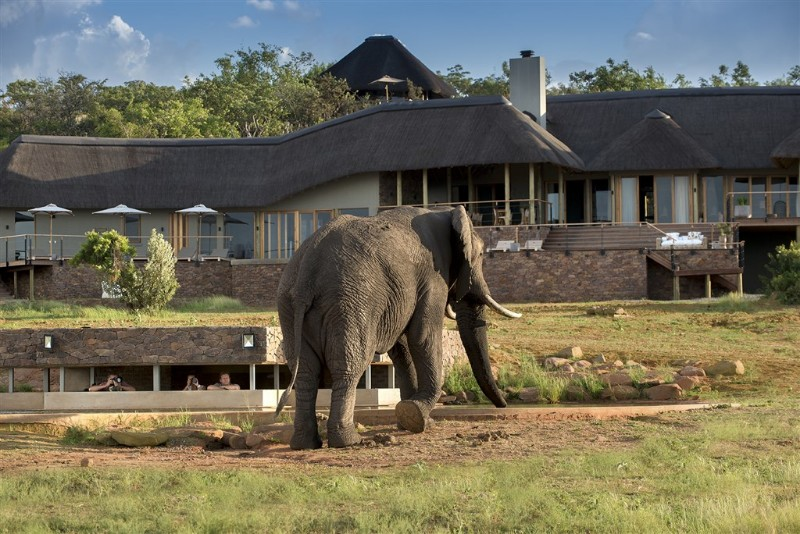 mhondoro-villa-view-animals-from-hide-under-the-ground