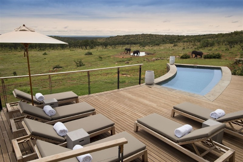 mhondoro-villa-view-of-elephants-from-pool-deck