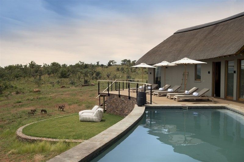 mhondoro-villa-view-warthog-pool-deck