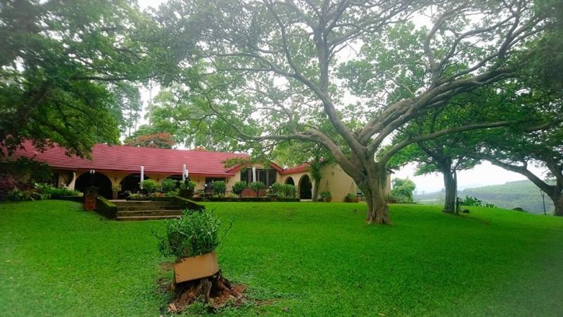 Bohm_s_Zeederberg_Country_House-Sabie_Mpumalanga-16