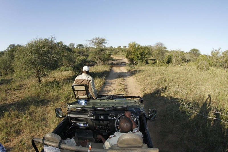 Game-viewing-Umlani-Bushcamp-Timbavati-Private-Nature-Reserve-Kruger-National-Park