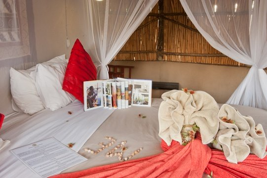 accommodation-double-hut-Umlani-Bushcamp-Timbavati-Private-Nature-Reserve-Kruger-National-Park