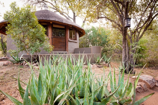 accommodation-eco-hut-exterior-view-Umlani-Bushcamp-Timbavati-Private-Nature-Reserve-Kruger-National-Park